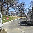 Graceland 203